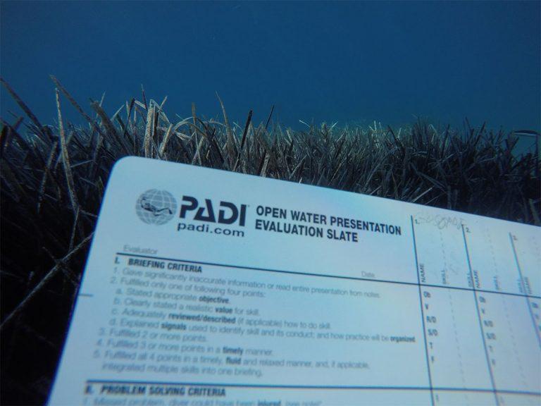 corso-open-water-diver5-